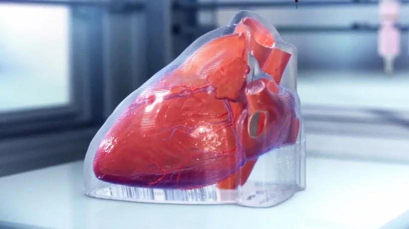 Прорыв года! Биотехнологическая компания из Чикаго напечатала миниатюрное человеческое сердце в 3D