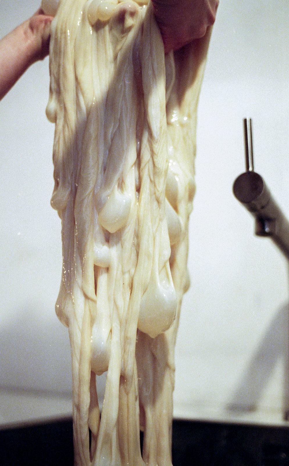 Лампа из коровьего кишечника. Ужасно или красиво?