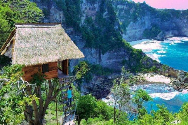 Мечты сбываются! Этот уютный домик на дереве предлагает отдых на Бали всего за 38$ ночь...
