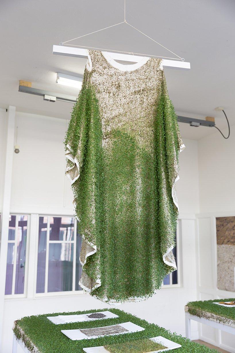 Одежда из пророщенных семях чиа. Это станет альтернативой меху.