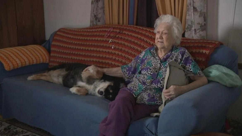 Эта собака унаследует 5 миллионов долларов после смерти своего хозяина